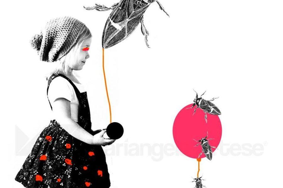 Arte e Cultura: Da oggi riparte 'stART' espone Mariangela Artese